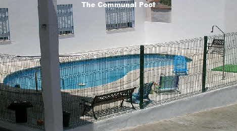 Almodovar. The Small Communial Pool